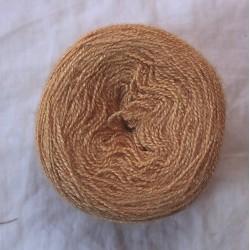 20/2 tussah silk - Light Orange